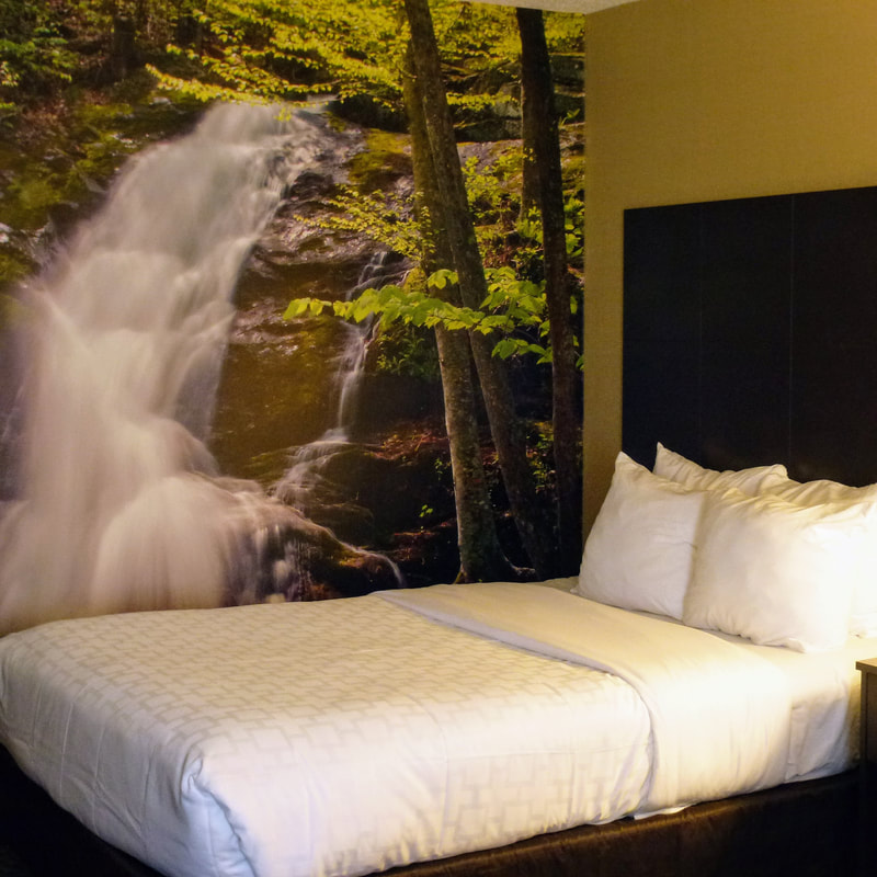 a picture of a guest room at the newly renovated Clarion Pointe Harrisonburg featuring a wall mural of a waterfall